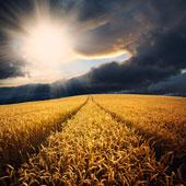 photographie d'un paysage avec un lever de soleil