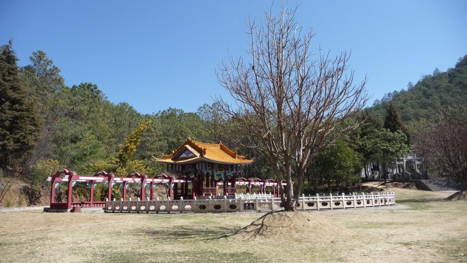 stage Qi Gong sur le mont sacré en Chine
